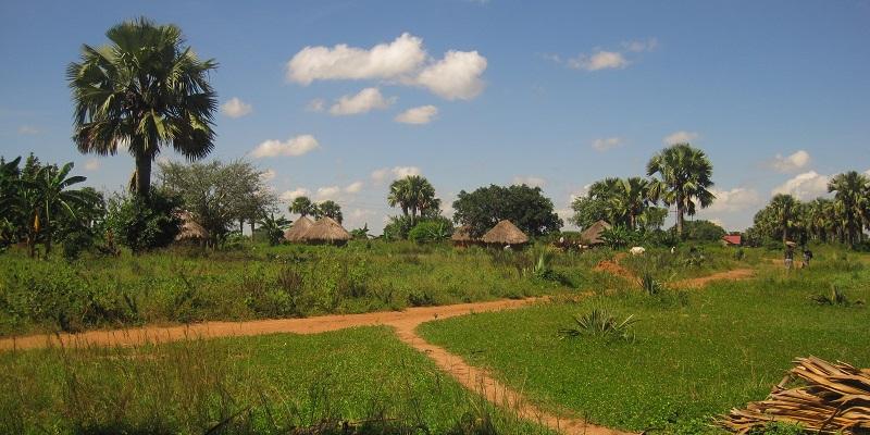 Landsby ved Madera-skolen i Uganda